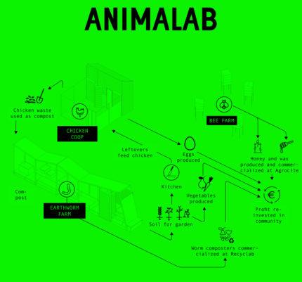 Animalab-1