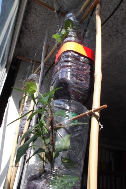 Prototype pour un jardin vertical hydroponique r urban for Jardin hydroponique