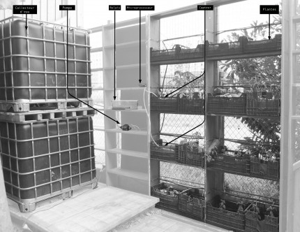 Irrigation assistée mise en place au Reyclab