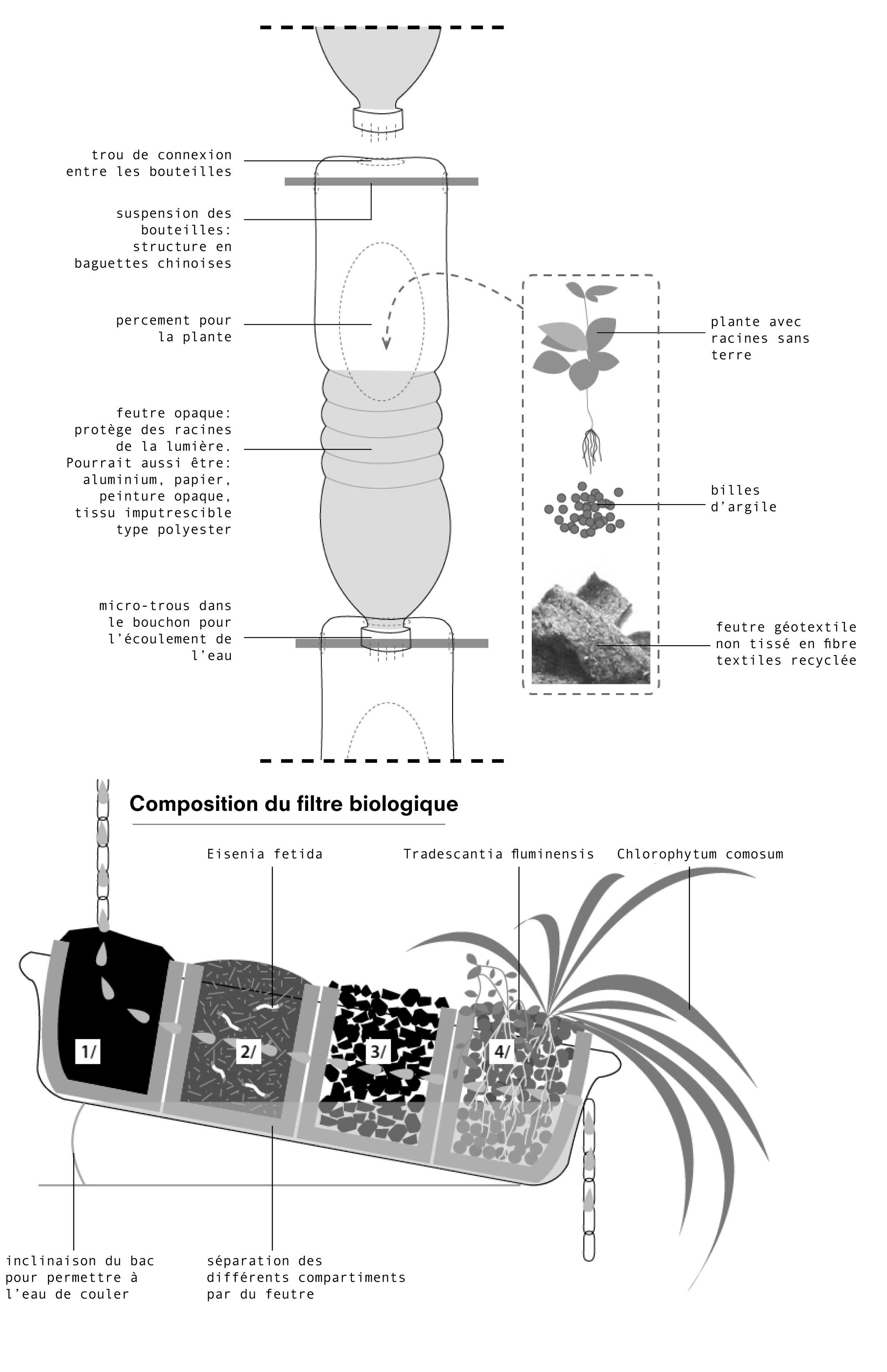 schema bouteille plantes